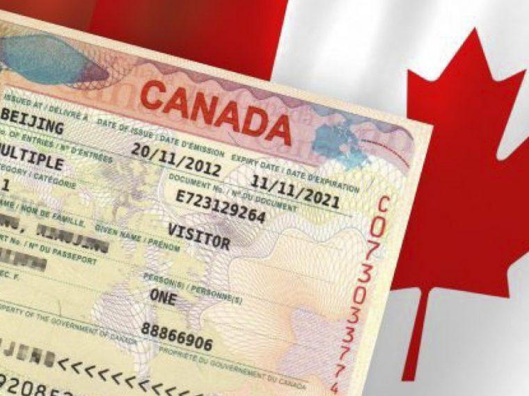 what is work visa